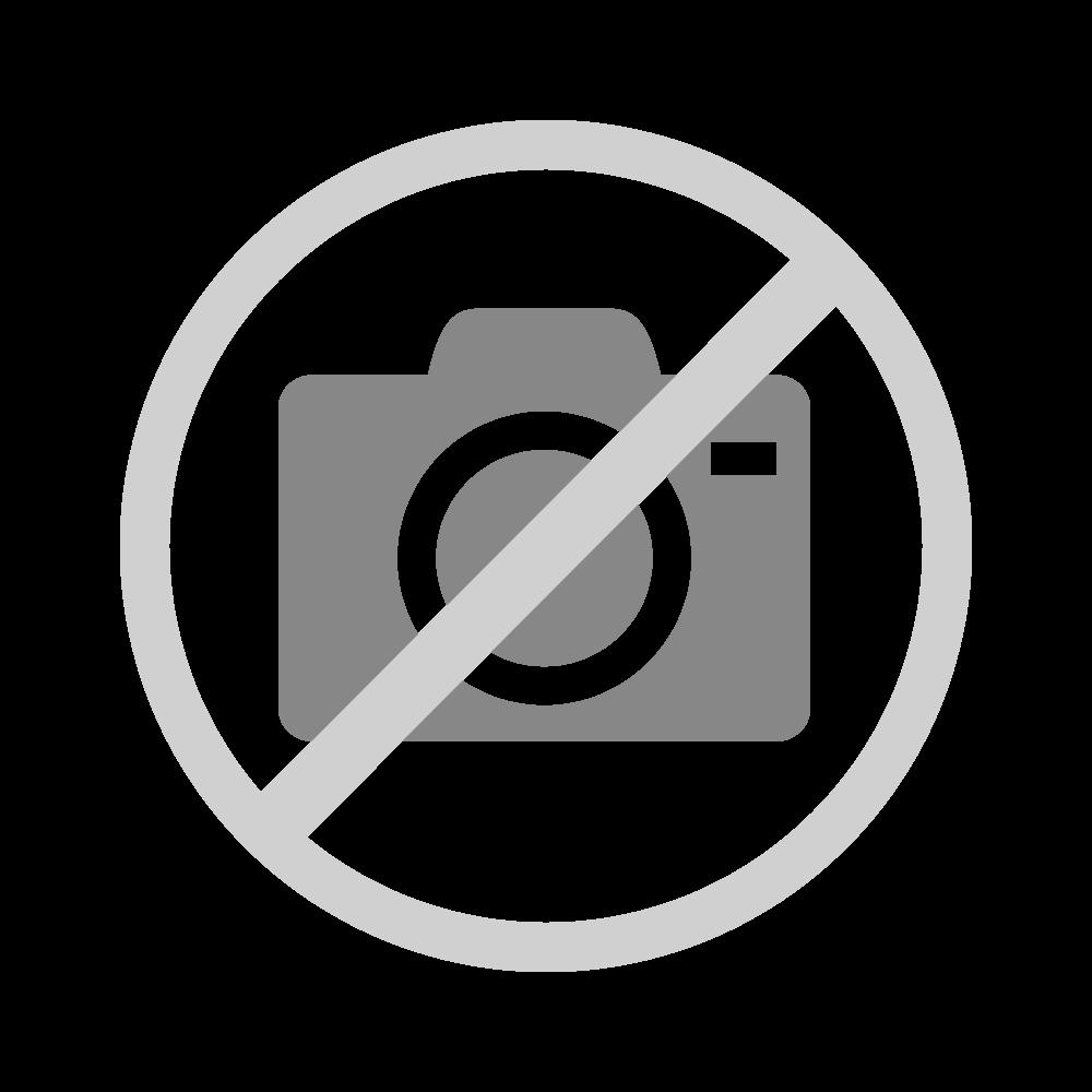 Lernprogramm Physik 03: Elektrizitätslehre, FLVG-Shop